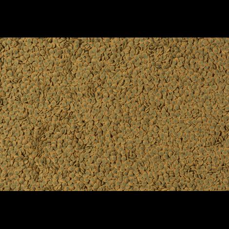 TETRA Pleco Wafer  - 2