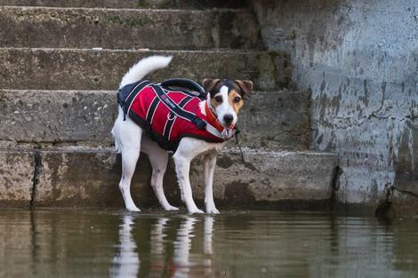 Plovací záchranná vesta  - 3
