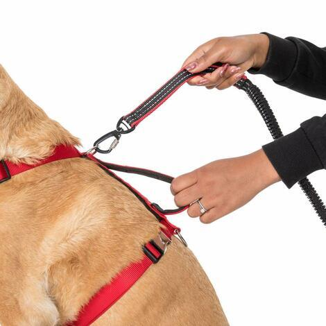 CHESTER - DOG RUNNING BELT AND LEASH - 3