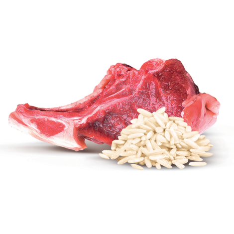 BRIT Mono Protein Lamb & Brown Rice 400g - 3