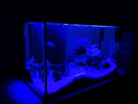 Akvárium set TETRA AquaArt bílý 35 x 25 x 35 cm !! POUZE OSOBNÍ ODBĚR !! 30l  - 3
