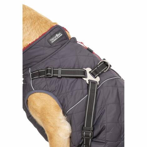 HERCULES - 2 IN 1 DOG JKT WITH HARNESS - 4