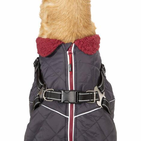 HERCULES - 2 IN 1 DOG JKT WITH HARNESS - 5