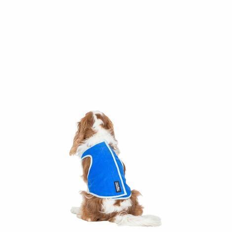 ALASKA - DOG COOLING VEST - 5