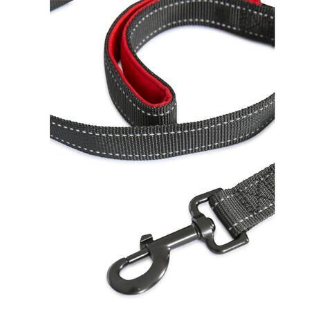 BUSTER -  DOG LEAD - 5