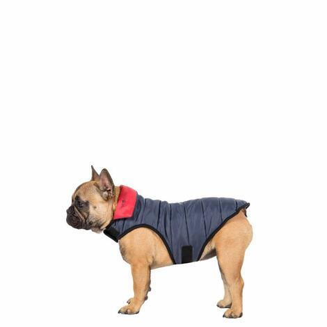 KIMMI X - QUILTED DOG JACKET - 5