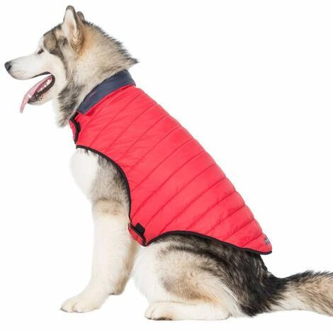 KIMMI X - QUILTED DOG JACKET - 7