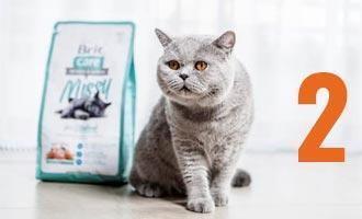 Brit Care Cat – Krmivo pro všechny kočičí osobnosti 2