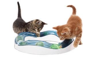 Ideální hračka pro kočku