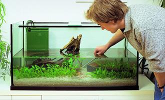 MOJE PRVNÍ AKVÁRIUM - Založení akvária